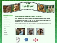 irish-vom-ellbach.de