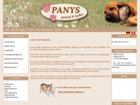 110087.panys.info