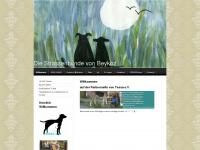 strassenhunde-beykoz.com