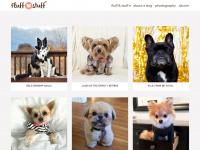 puchic.com
