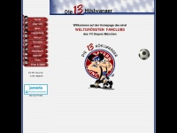 13hoeslwanger.de Webseite Vorschau