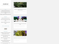automatic-seeds.com Webseite Vorschau