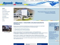 amsonic-hamo.com Webseite Vorschau