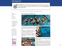 wasserwacht-schwabach.de