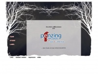Penzingrecords.com