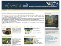 pijawetz.com
