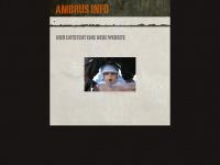ambrus.info Webseite Vorschau