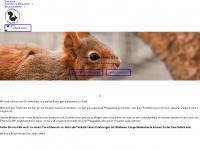 eichhoernchen-schutz.de