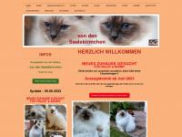saalebirmchen.de Webseite Vorschau