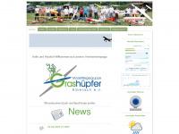 Grashuepfer-biberach.de