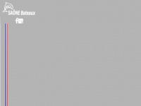 saone-bateaux.com