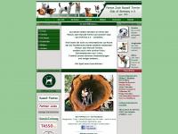 parson-jack-russell-terrier-club.de