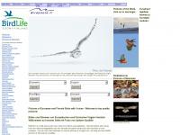 Birdphoto.fi