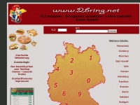 2bring.net Webseite Vorschau