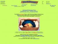 babykorb-online.com