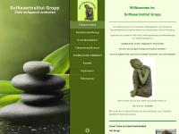 softlaserinstitut.de