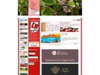 stradadelbardolino.com