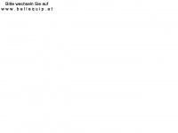 kvm-equipment.at Webseite Vorschau