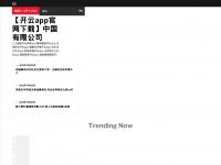aerbay.com Webseite Vorschau