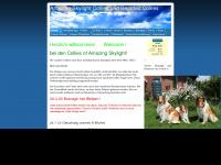 amazingskylightcollies.de Webseite Vorschau