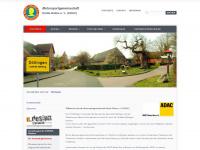 Msg-hunte-delme.de