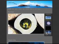 wannes.ch Webseite Vorschau