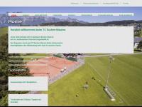 tceschen-mauren.li Webseite Vorschau