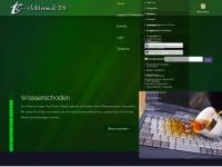 tcelektronik.de Webseite Vorschau