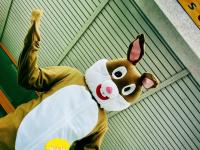 Saalburgschule.de