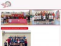 bvv-online.de Thumbnail