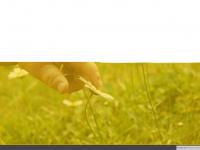 kinderleben.de