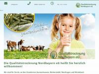 qtn.de Webseite Vorschau
