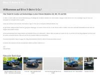bxig.net Webseite Vorschau