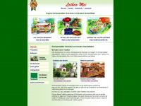 lothar-mei.de Webseite Vorschau