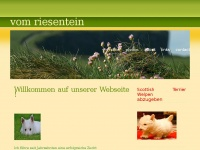 Riesenstein-terrier.de