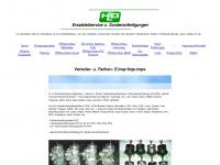 roto-diesel-einspritzpumpe.de