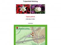 tulpenfeld.de