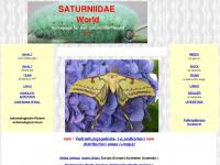 Saturniidae-web.de
