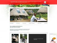 amazonica.org Webseite Vorschau