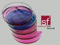 sciencefilmfest.at