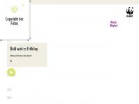 Pandaclub.ch