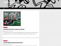 Psi-tv.de
