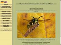 insektenflug.de