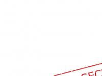 swingermobil.de Webseite Vorschau