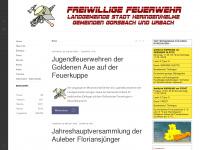 bv-goldeneaue.de Thumbnail