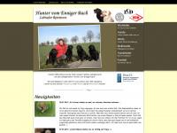 huntervomennigerbach.de Thumbnail