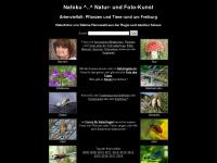 nafoku.de Webseite Vorschau