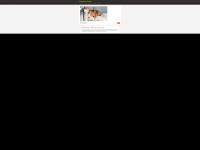 hundesenioren.de Webseite Vorschau