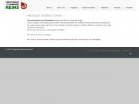 treppenbau-reihs.de Webseite Vorschau