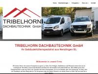 tribelhorn-dachbautechnik.ch Webseite Vorschau